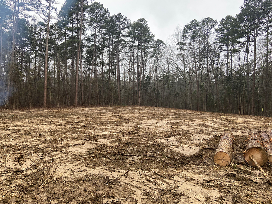 demo-land-clearing-concord-nc